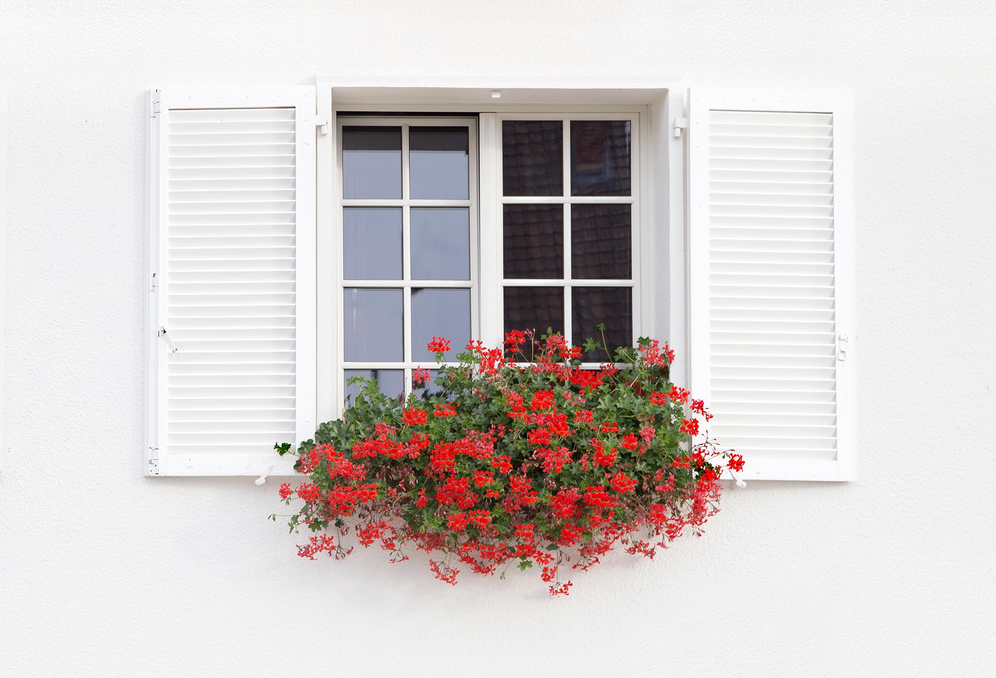 Holzfenster mit Blumen
